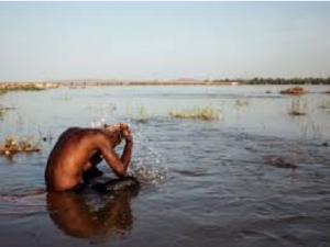 Schistosomiasi: trasmissione dalle acque stagnanti
